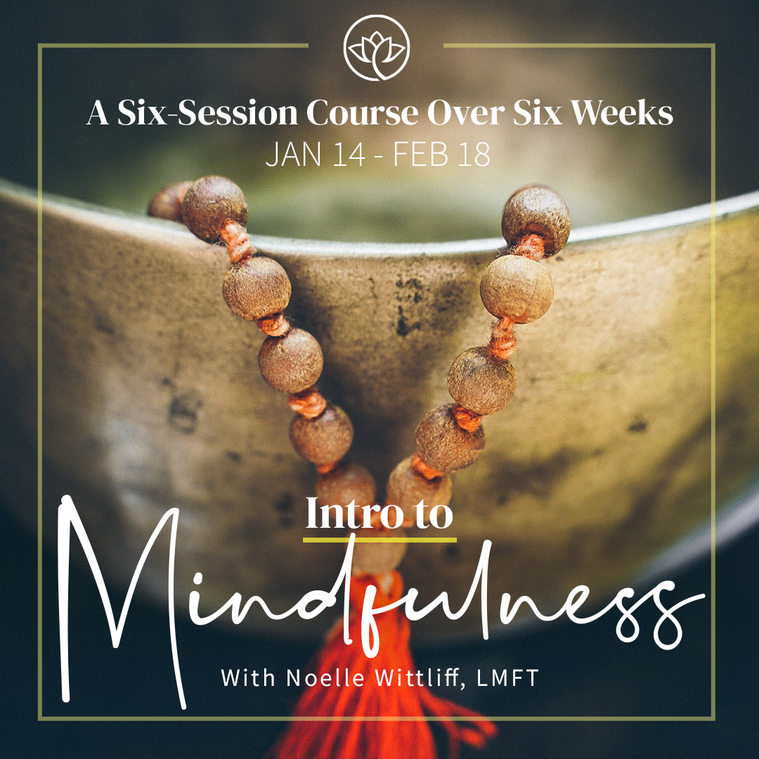 Intro to Mindfulness Course 1x1